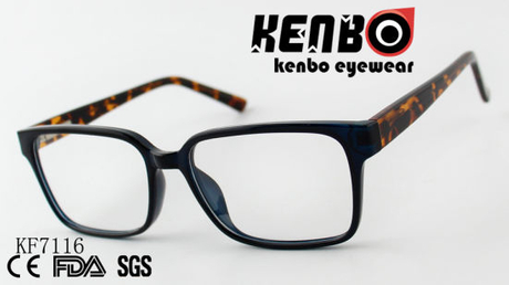 High Quality PC Optical Glasses Ce FDA Kf7116