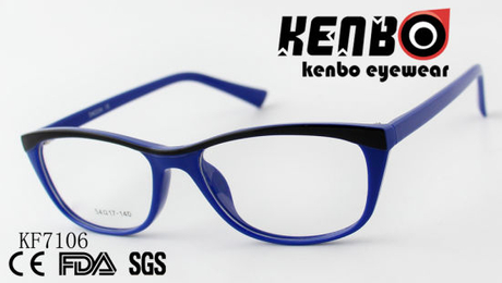 High Quality PC Optical Glasses Ce FDA Kf7106